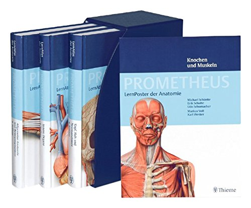 prometheus-angebot